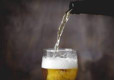 Öl med skum i exponeringsglas Buteljera av öl Arkivfoton