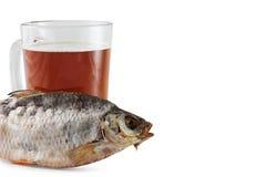 Öl och fisk royaltyfri fotografi