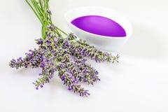 Öl und wesentliche Auszüge von Lavendel Lavandula lizenzfreies stockbild