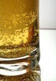 ölexponeringsglas Royaltyfria Bilder