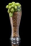 Ölexponeringsglas med ingredienser Arkivfoto