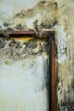 Ölgemälde und Ecke eines Holzrahmens Stockfoto