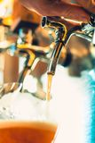 Ölklapp i en bar royaltyfri foto