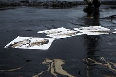 Ölpest auf dem Strand stockfotografie