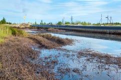 Ölpest Verseuchter Strand in Chonburi, Thailand Lizenzfreie Stockfotografie
