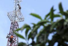 ÖLPREIS-SCHLAG-WIRTSCHAFT INDONESIENS GLOBALE Lizenzfreies Stockbild