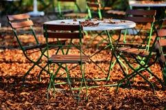 Ölträdgård i fall fotografering för bildbyråer