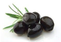 Ölzweig mit Olivenöl Stockbilder