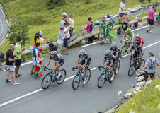 "Ömt ställe-moment för den Team Omega Pharmaâ €en ""- Tour de France 2014 Arkivfoton"