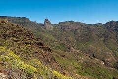 Ön av La Gomera, gömma i handflatan dalen Fotografering för Bildbyråer