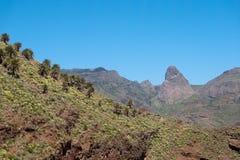 Ön av La Gomera, gömma i handflatan dalen Royaltyfri Bild