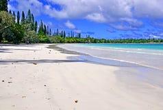 Ön av sörjer, Nya Kaledonien Arkivbild