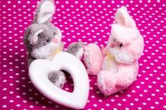 Önska att vara min valentin - två kaniner och en hjärta arkivbild