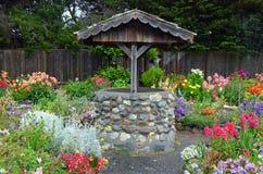 Önska väl i dahliaträdgård arkivfoton