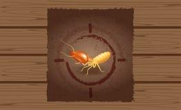 Önskad affisch av termit på den träbruna väggen, tom termitannons på trätappningväggen, termitbild på trätextur för ban royaltyfri illustrationer