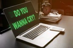 Önskar du att gråta Malware är den smittade datoren Fotografering för Bildbyråer