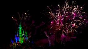 Önskar nattetidimponerande föreställningfyrverkerier Royaltyfria Foton
