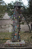 Önskaträd Arkivfoto