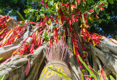 Önskaträd askfat traditionell väg dyrkanen av andarna Royaltyfria Bilder
