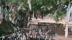 Önskaträd och staket med band av olika färger Önskaträd nära den forntida gravvalvet Religionband på det önskaträd och staketet stock video