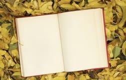 Öppen anteckningsbok på höstsidor royaltyfria foton