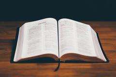 öppen bibel Royaltyfria Foton
