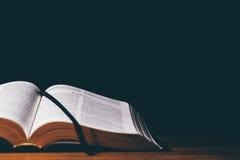 öppen bibel Fotografering för Bildbyråer