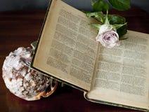Öppen bok med det rosblomningen och skalet Arkivfoto