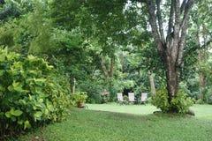 Öppen gräsplanträdgård med tre stolar fotografering för bildbyråer