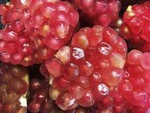 Öppen granatäpple för ny frukt att avslöja klungorna av fruktsaft Arkivbilder
