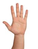 öppen hand royaltyfria foton