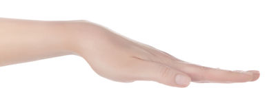 Öppen hand Arkivbild