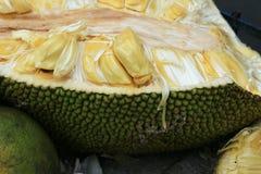 öppen jackfruit royaltyfri fotografi