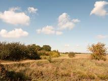 Öppen marsklanlandskapplats med blåa himlar, moln och gras Royaltyfri Bild