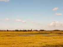 Öppen marsklanlandskapplats med blåa himlar, moln och gras Royaltyfria Bilder