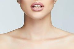 Öppen mun för härlig flicka med den sunda tanden Arkivfoto