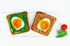Öppen smörgås med ägg Arkivbilder