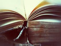 Öppen tappningbok Arkivbilder