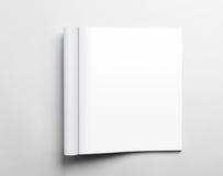 Öppen tidskrift för mellanrum Fotografering för Bildbyråer