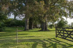 Öppen tranqueraport i ett fält i Argentina, argentinare Royaltyfri Fotografi