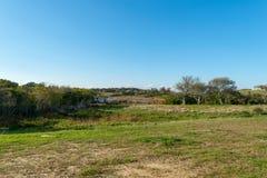 Öppet fält av grönt gräs och ett litet damm som omges av träd och kullar, med en prickfri blå himmel i bakgrunden arkivfoto