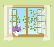 Öppet fönster med gardiner på en grön bakgrund Arkivbild