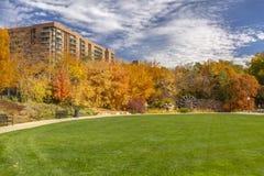 Öppet gräsfält med nedgångträd och lägenheter arkivbilder