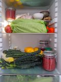 Öppet kylskåp av en nollavfalls och en plast- fri vegetarisk livsstil royaltyfri bild
