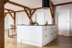 Öppet utrymme med kökön fotografering för bildbyråer