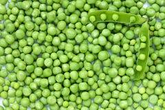 Öppna ärtafröskidan på en bakgrund av gröna ärtor Arkivfoto