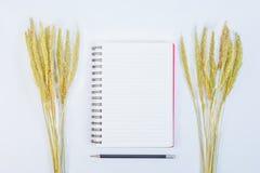 Öppna anmärkningsboken med blyertspenna- och gräsblommor på bakgrund Royaltyfri Fotografi