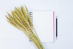 Öppna anmärkningsboken med blyertspenna- och gräsblommor på bakgrund Arkivfoto