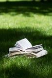 Öppna böcker på gräs i en gräsplan parkerar Royaltyfria Bilder