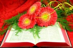 Öppna bibeln och blommor Royaltyfri Fotografi